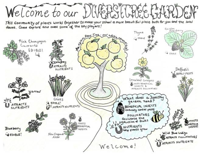 diversitree